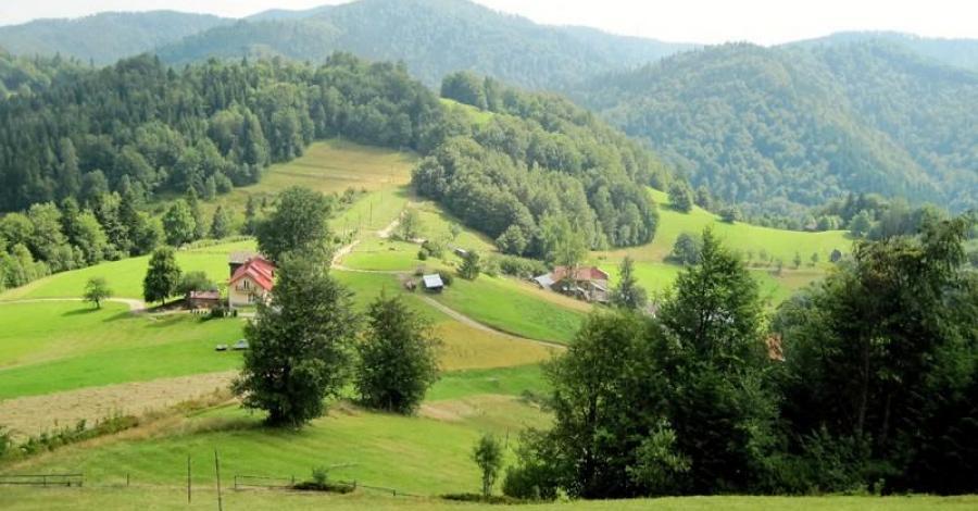 Przełęcz Przysłop w Beskidzie Sądeckim - zdjęcie
