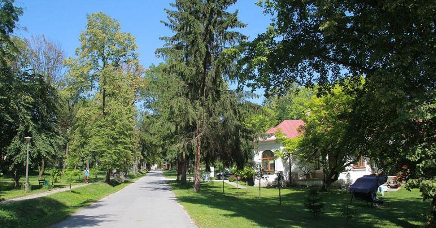 Park Zdrojowy w Solcu Zdroju - zdjęcie
