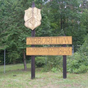 Arboretum im. Powstańców 1863 w Kopnej Górze