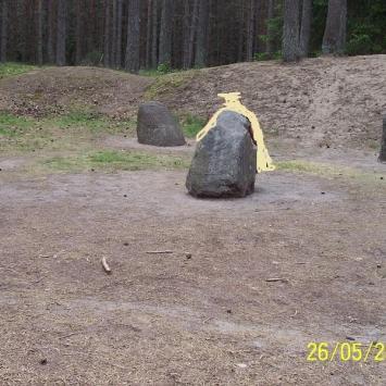 Kamienne Kręgi Gotów w Grzybnicy