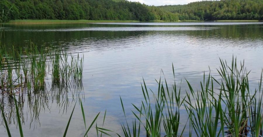 Jezioro Karwno Małe - zdjęcie