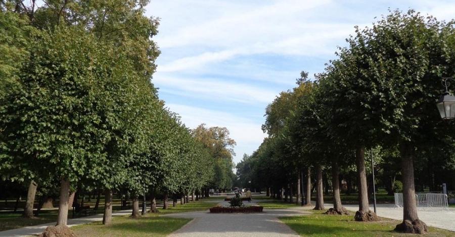 Park Zdrojowy w Ciechocinku - zdjęcie