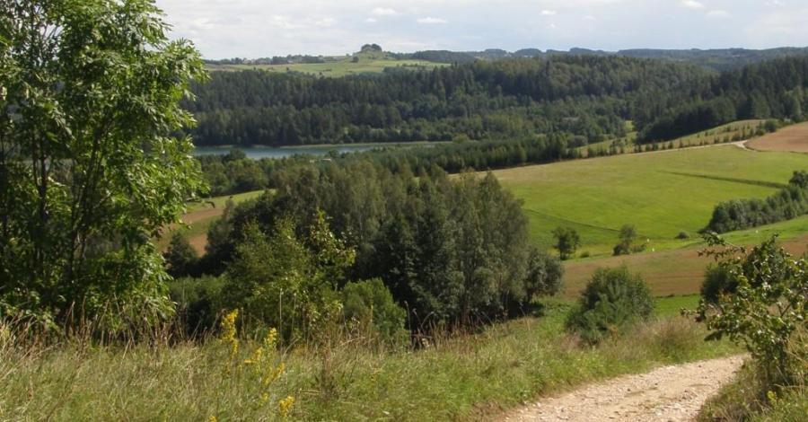 Ścieżka Wokół jeziora Jaczno - zdjęcie