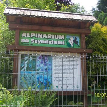 Alpinarium na Szyndzielni, mirosław