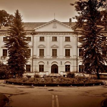 Pałac w Koniecpolu
