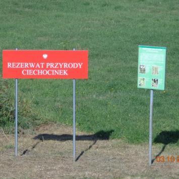 Rezerwat halofitów w Ciechocinku