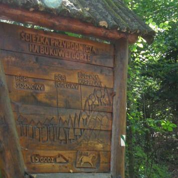 Ścieżka dydaktyczna na Bukową Górę