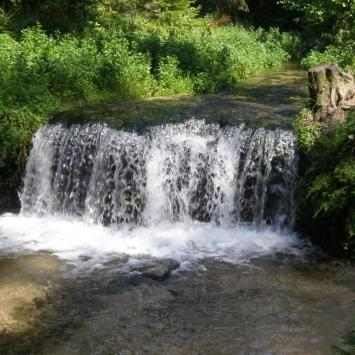 Wodospad Jeleń na Roztoczu