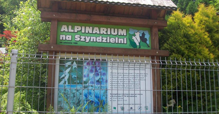 Alpinarium na Szyndzielni - zdjęcie