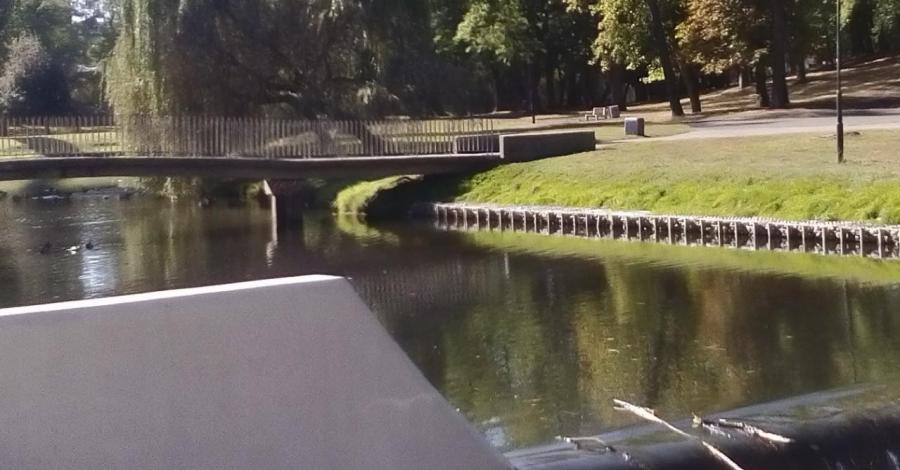 Na spacer jesienny to tylko do parku im. Henryka Sienkiewicza we Włocławku - zdjęcie