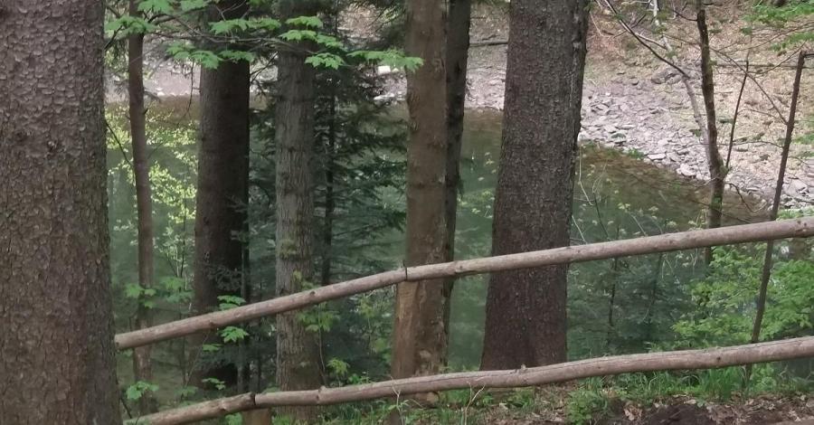 Mokry Stawek na Babiej Górze - zdjęcie