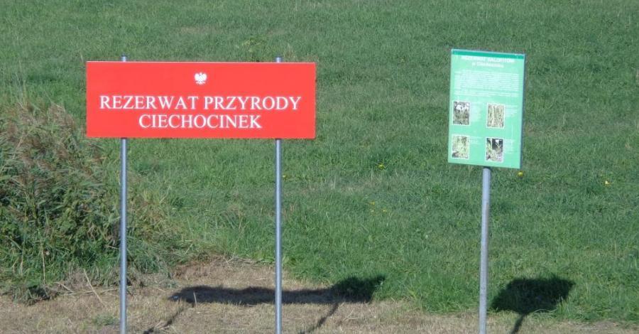 Rezerwat halofitów w Ciechocinku - zdjęcie