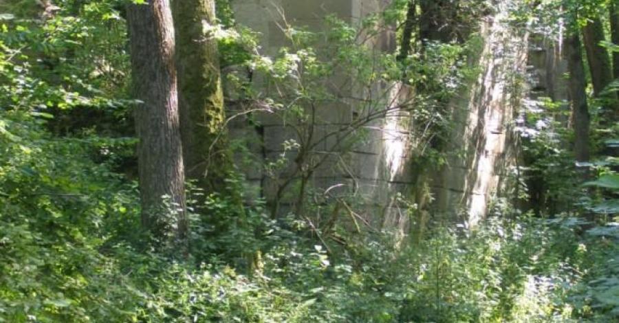Ruiny papierni na Roztoczu - zdjęcie