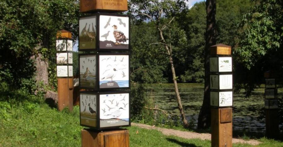 Ścieżka edukacyjna Opowieści Turtula - zdjęcie