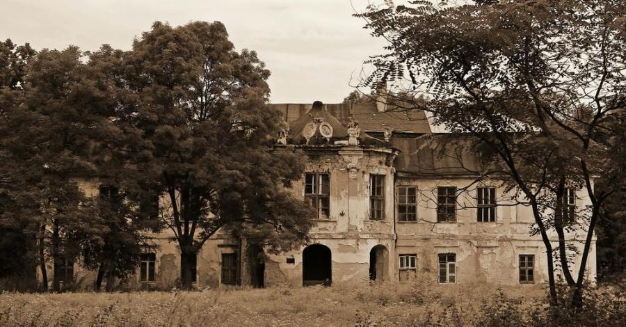 Pałac w Śladkowie Dużym - zdjęcie