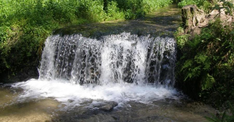 Wodospad Jeleń na Roztoczu - zdjęcie