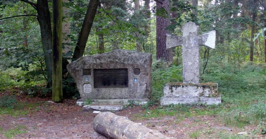 Wzgórze Kościółek na Roztoczu - zdjęcie