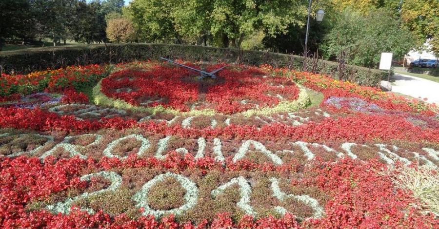 Zegar kwiatowy w Ciechocinku - zdjęcie