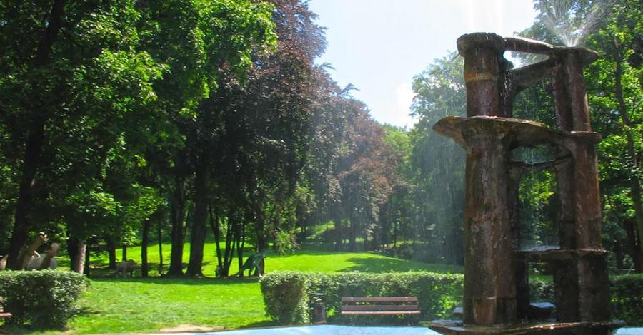 Park Miejski w Ziębicach - zdjęcie