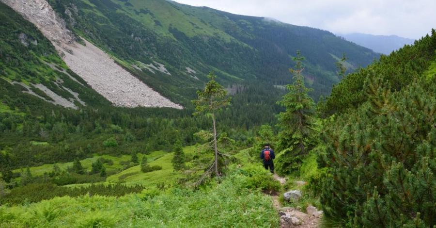 Dolina Starorobociańska w Tatrach - zdjęcie