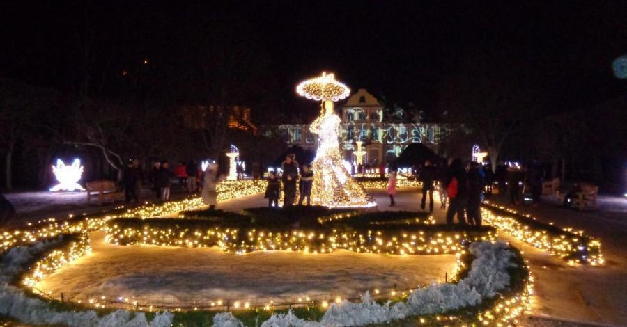 Iluminacja w Parku Oliwskim w Gdańsku - zdjęcie