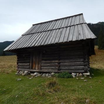 Wrześniowa Dolina Chochołowska - zdjęcie