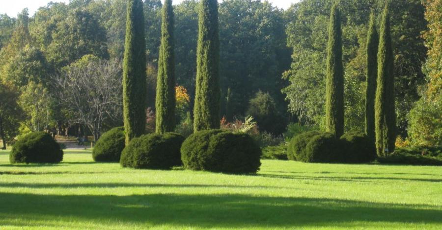 Arboretum Wirty - zdjęcie