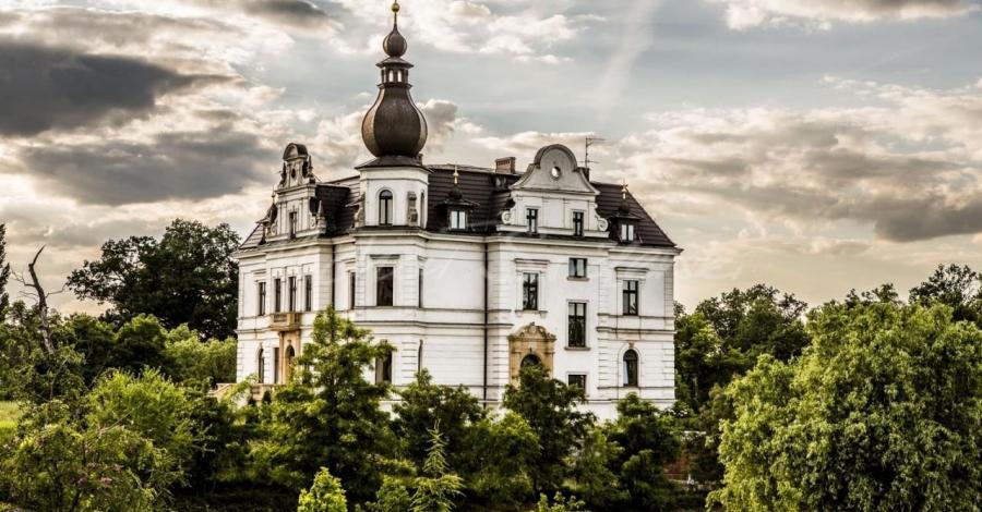 Pałac w Biskupicach Podgórnych - zdjęcie