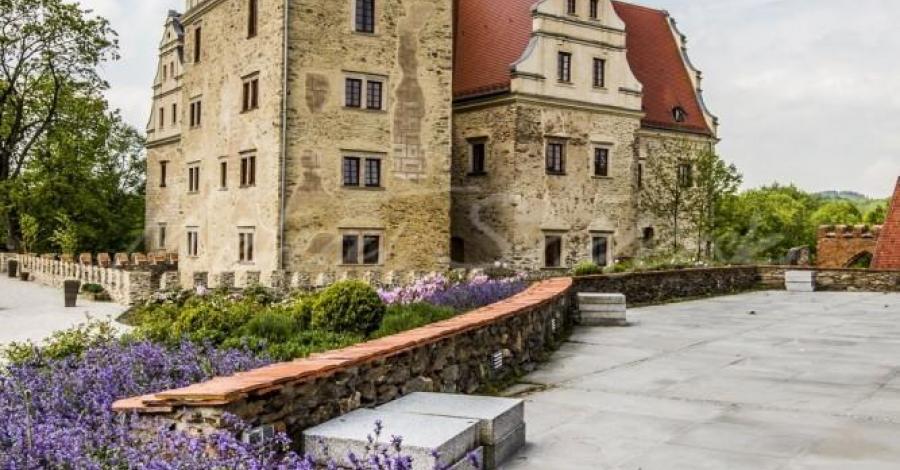 Zamek w Goli Dzierżoniowskiej - zdjęcie