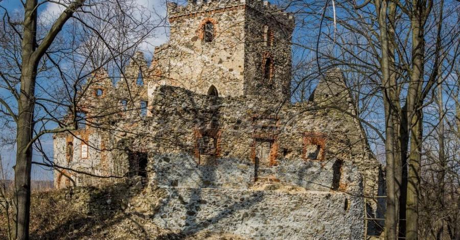 Zamek w Lipie - zdjęcie