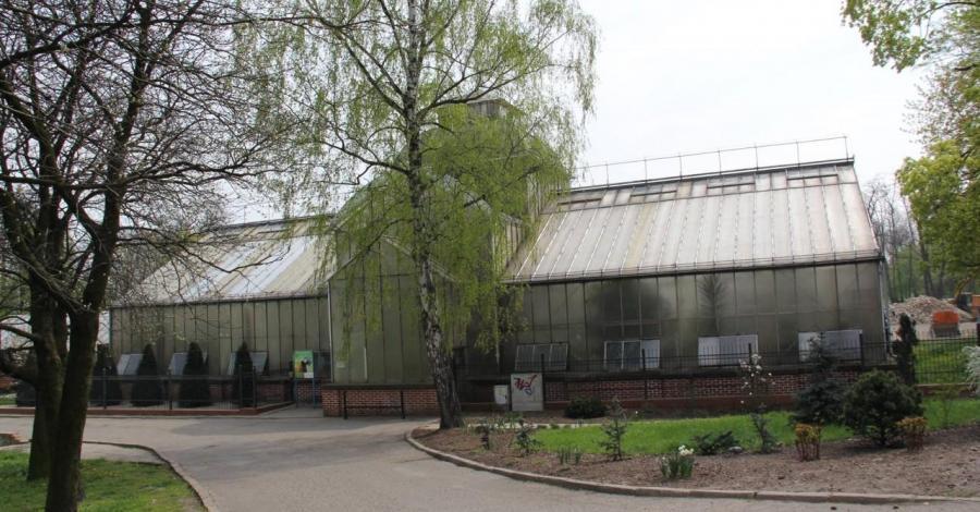 Palmiarnia w Legnicy - zdjęcie