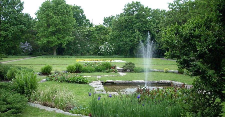 Ogród Botaniczny w Poznaniu - zdjęcie