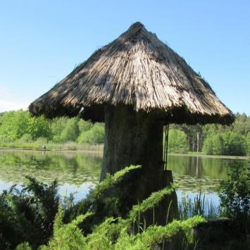 Stradomia Wierzchnia-zalew i Arboretum Leśne