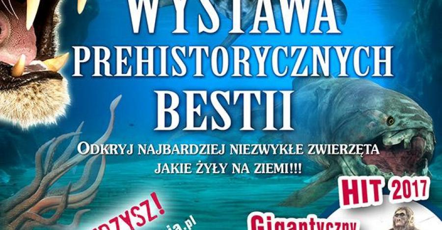 Wystawa Prehistorycznych Bestii w Jastrzębiej Górze - zdjęcie