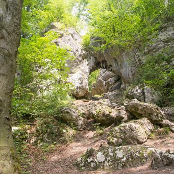 Brama Twardowskiego w Złotym Potoku - zdjęcie