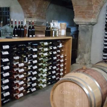 Winnice w Paczkowie