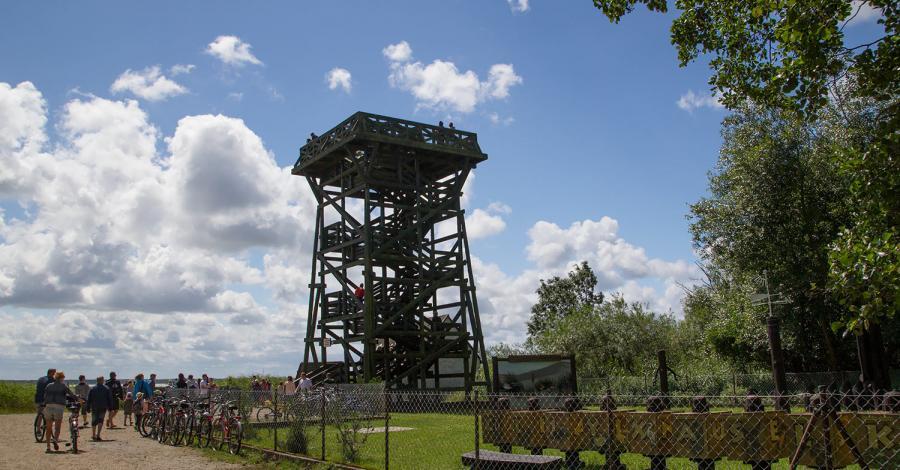 Wieża widokowa w Rąbce - zdjęcie