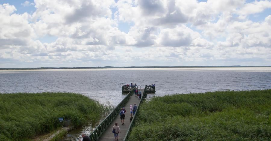 Widok z wieży na Jezioro Łebsko, Anna Piernikarczyk