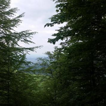 Czantoria Wielka w Beskidzie Śląskim - zdjęcie