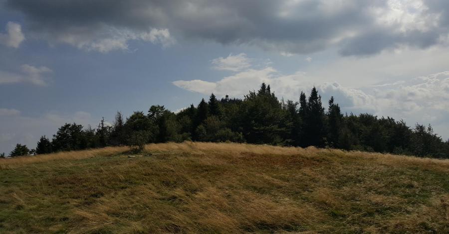 Mogielica - zdjęcie