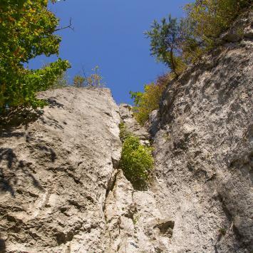 Dolina Wodącej