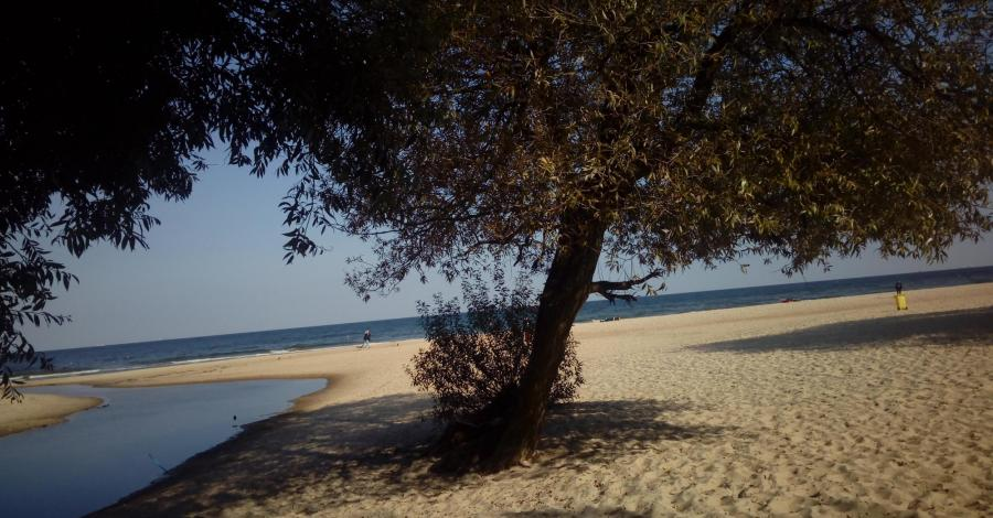 Nad brzegiem morza w Gdańsku czyli spacerem z Jelitkowa do Brzeźna - zdjęcie