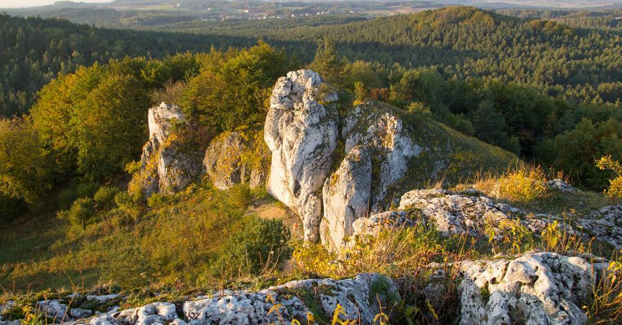 Grochowiec Wielki w Ryczowie - zdjęcie