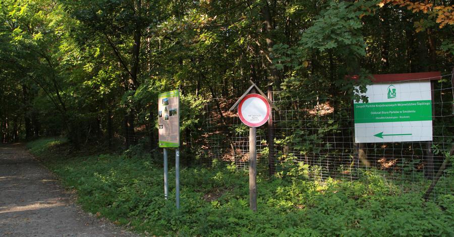 Ośrodek Edukacji w Smoleniu - zdjęcie