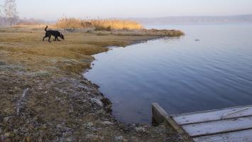 Nad zalewami - Chechło i Rogoźnik - zdjęcie