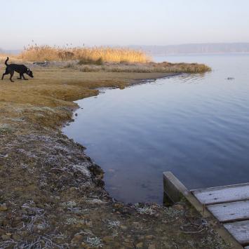 Nad zalewami - Chechło i Rogoźnik