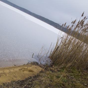 Prawie samotny spacer przez las nad Jezioro Nakło Chechło