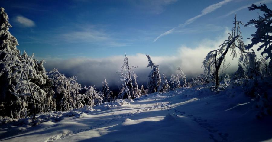 Zimowo na Stogu Izerskim - zdjęcie