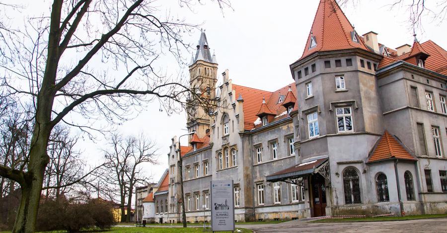 Pałac w Nakle Śląskim i otaczający park - zdjęcie