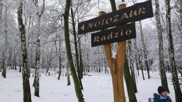 Księża Góra w Radzionkowie zimowo - zdjęcie